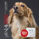 【83%が健康維持を実感!】純度100%の犬用コラーゲンサプリ『Ta-Ta(タータ)』を作りました!
